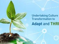 Undertaking Culture Transformation to Adapt and Thrive